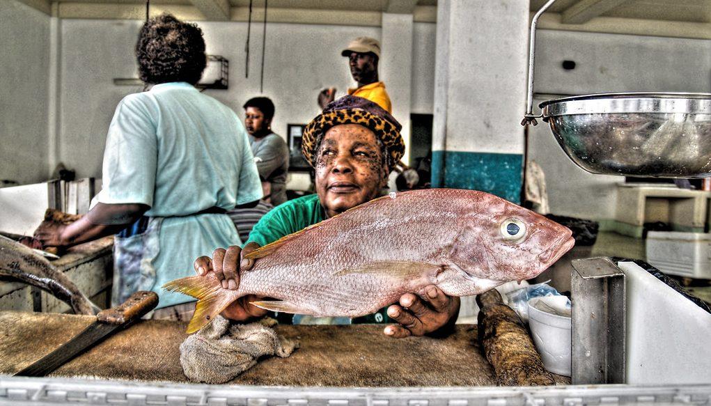 Shopping Grenada