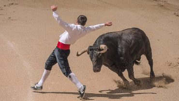 Watch a Bullfight
