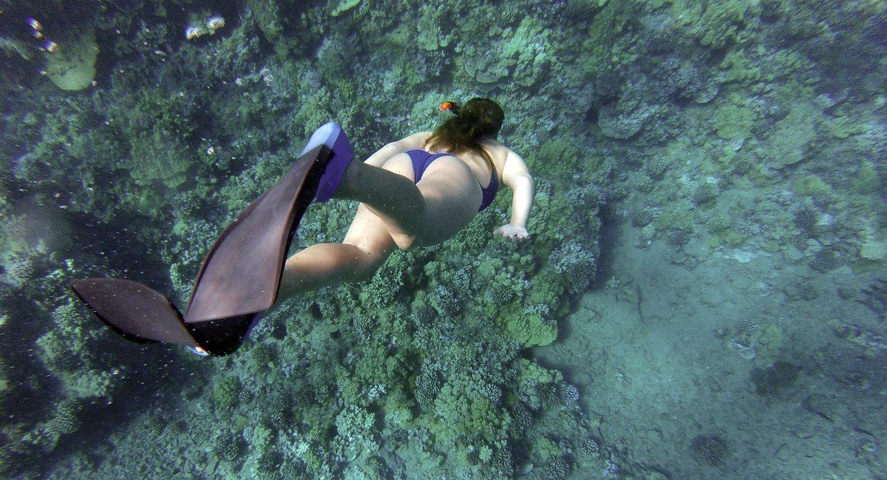 Snorkeling and scuba diving - Oahu, Maui, the Big Island and Lanai
